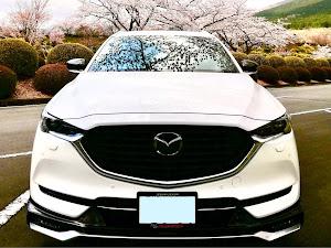 CX-8  XD PROACTIVE AWDのカスタム事例画像 ワルクマ8)^o^(さんの2020年07月24日10:28の投稿
