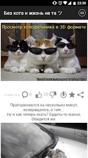 猫がいなければ、人生は同じツではない