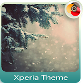 Spruce with snow | Xperia™ Theme