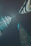 Skyscraper by Anonymous