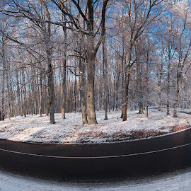 On the Turning Away I. by Zsolt Zsigmond - Transportation Roads ( winter, snow, trees, forest, road, panorama )