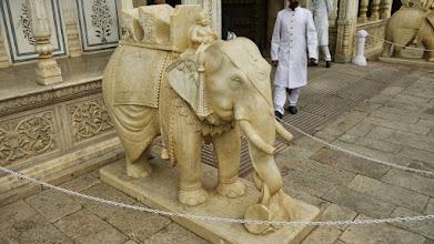 Photo: Der einzige Elefant, den wir gesehen haben