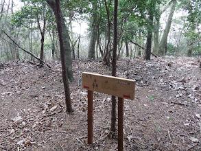 仙人桧の標識