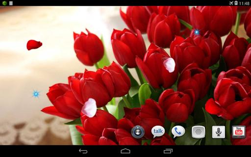 個人化必備免費app推薦|Tulips Amazing Photo LWP線上免付費app下載|3C達人阿輝的APP