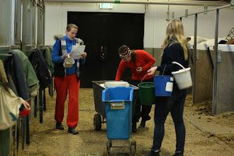 Photo: AK, Kinna och Malin fodrar hästarna