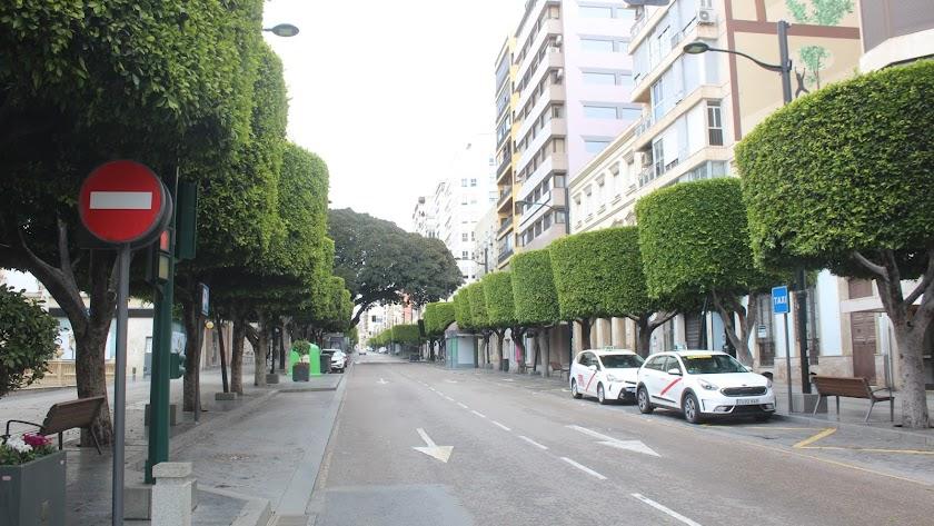 Imagen del Paseo de Almería durante este periodo de confinamiento.