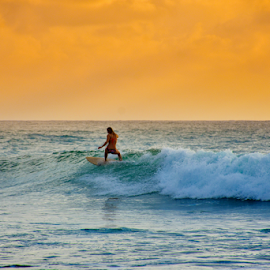 Surf In Golden Hour by Sihina Lahiru - Sports & Fitness Surfing ( surf, surfer, surfing, photo, girl, sun, photos, sunlight, sri lanka, sunset, lady, photographer, sun set, photography )