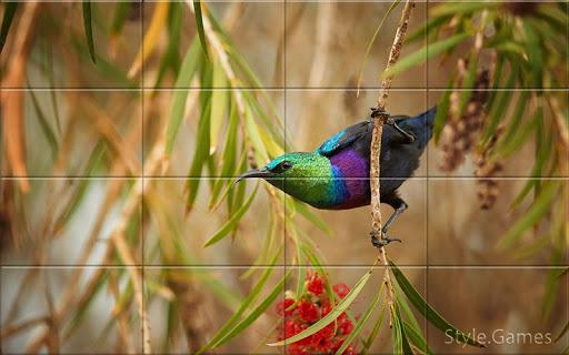 Sparrows Puzzle  screenshots 10