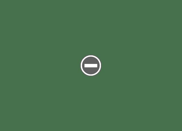 Жизнь в Братиславе