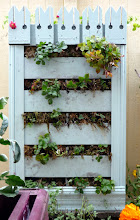 Photo: Strawberry vertical planter with nasturtiams growing from the top.