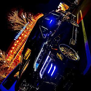 ヴェルファイア AYH30W ZR Gエディションのカスタム事例画像 リンク♂さんの2020年01月02日02:21の投稿