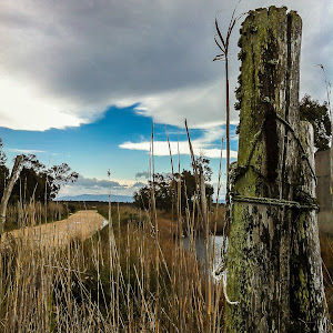 Landscape 04.jpg