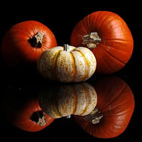 Pumpkins by Cristobal Garciaferro Rubio - Food & Drink Fruits & Vegetables ( reflection, pumpkin, pumpkins, fruits, pwcvegetables, produce )