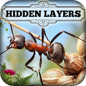 Hidden Layers: Bug Village