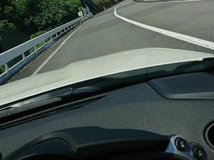 フェアレディZ Z34のカスタム事例画像 あきさんの2020年08月12日18:21の投稿