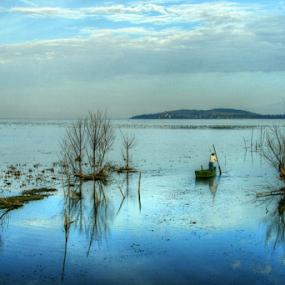 Lake Trasimeno by Dominic Jacob - Landscapes Waterscapes ( reflection, trasimene, italian, reflections, italie, lake, bleu, lac, lago, reflets, italia, blue, trasimeno, italy, reflect,  )