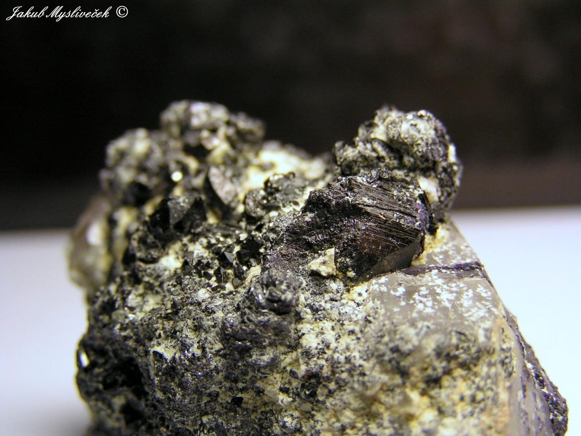 Photo: Detail předchozího vzorku na krystaly wolframitu. Největší krystal 11 mm.