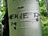 Photo: Herders '79