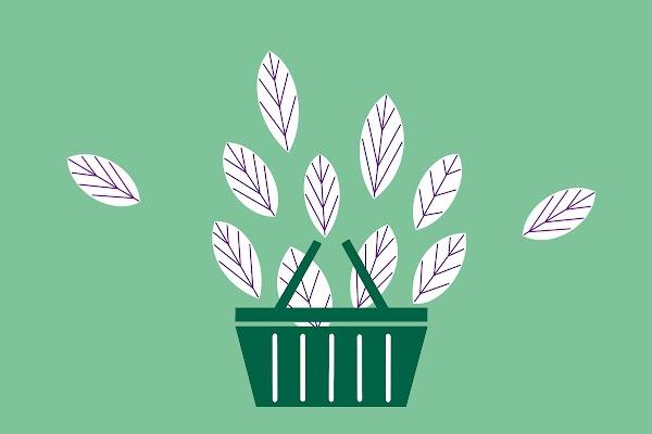Fünf Wege zu mehr Nachhaltigkeit im Einzelhandel