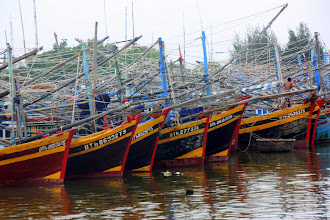 Photo: Year 2 Day 23 - Fishing Boats in Phan Thiet Harbour
