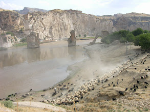 Photo: Flocks being driven to the Tigris River across from historic Hasankeyf
