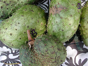 Photo: Soursop, Kalua, Hawaii