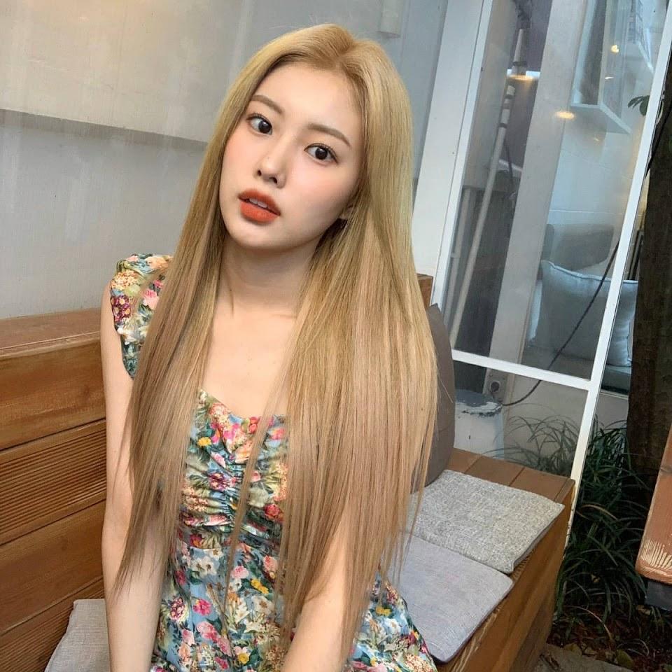 blondi 41
