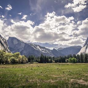 Yosemite Meadow by Ruben Parra - Landscapes Prairies, Meadows & Fields ( half dome, california, yosemite national park, valley, landscape, cooks meadow,  )