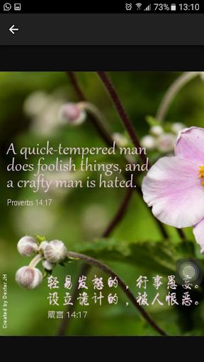 God's Promise 上帝的应许 screenshot 5
