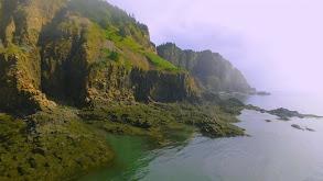 Bay of Fundy thumbnail