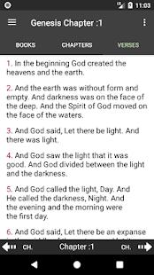 Modern KJV Bible - náhled