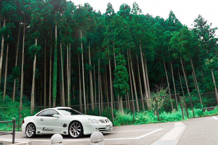 SL R230の福岡,五ケ山ダム,小川内の杉,車以外の🐢活,嫁は二日酔い🤮に関するカスタム&メンテナンスの投稿画像5枚目