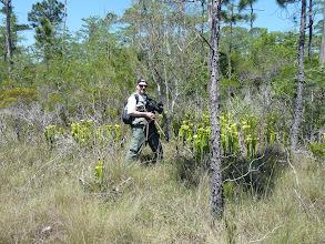 Photo: Siggi filming Sarracenia flava var. maxima near Sumatra (Florida Panhandle).