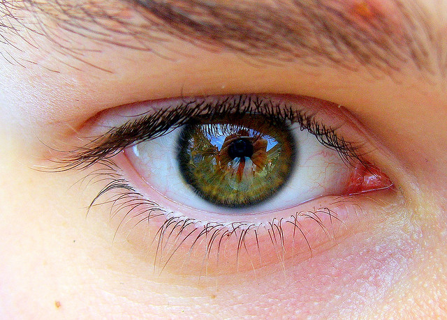 A GUIDE TO MAKING THE MOST OF YOUR EYES
