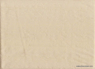 Photo: Delhi 10 - Powerloom Dupioni Silk - 4002