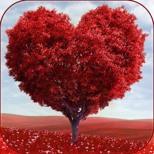 愛の木 - ライブ壁紙 個人化 App LOGO-APP試玩