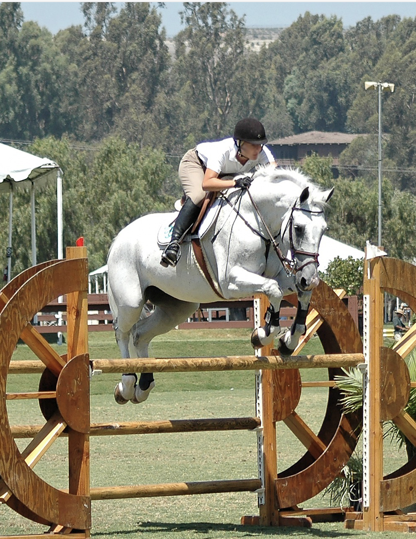 Grey show jumper clears a narrow jump