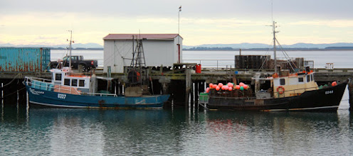 Photo: boats in bluff port