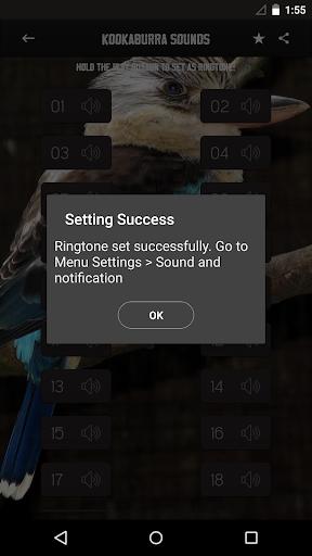 玩免費音樂APP|下載クッカバラ音 app不用錢|硬是要APP
