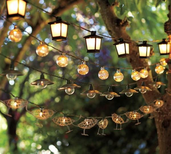 Chú ý lượng ánh sáng cần thiết