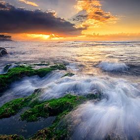 Morning Rhythm by Hendri Suhandi - Landscapes Beaches ( sunrays, wave, sunrise, beach, motion )