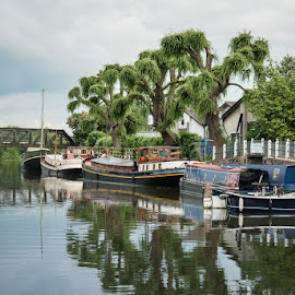 Boats at Ely by Sam Alexander - Transportation Boats