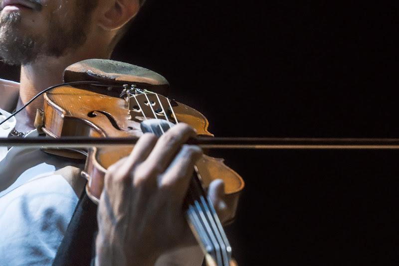Le macchine si guastan con l'uso; i violini con il riposo.  Giuseppe Prezzolin di Viola1