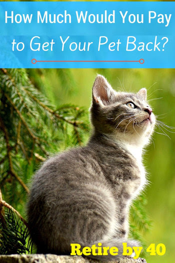 How much would you pay to get your pet back?