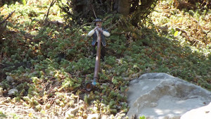 Joueur de cor des Alpes-jarditrain parc de loirs vaucluse 84