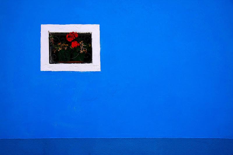 Finestra nel Blu di Francesca Malavasi