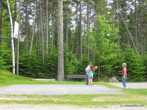 Photo: Basketball at Stillwater State Park