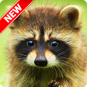 Animal Pictures icon