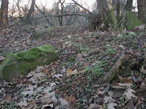 Photo: W 1939 r. cmentarz przeszedł na własność Zrzeszenia Żydów w Niemczech (Reichsvereinigung der Juden in Deutschland). Podczas II wojny światowej hitlerowcy zdewastowali cmentarz. Pod koniec wojny na terenie nekropolii wybudowano bunkier obronny. Zniszczone zostały wówczas wszystkie tutejsze macwie. Na przełomie stycznia i lutego 1945 r. na terenie cmentarza odbyły się walki niemiecko-sowieckie. http://www.sztetl.org.pl/pl/article/skorogoszcz/12,cmentarze/1618,cmentarz-zydowski-w-skorogoszczy-ul-swierczewskiego-/