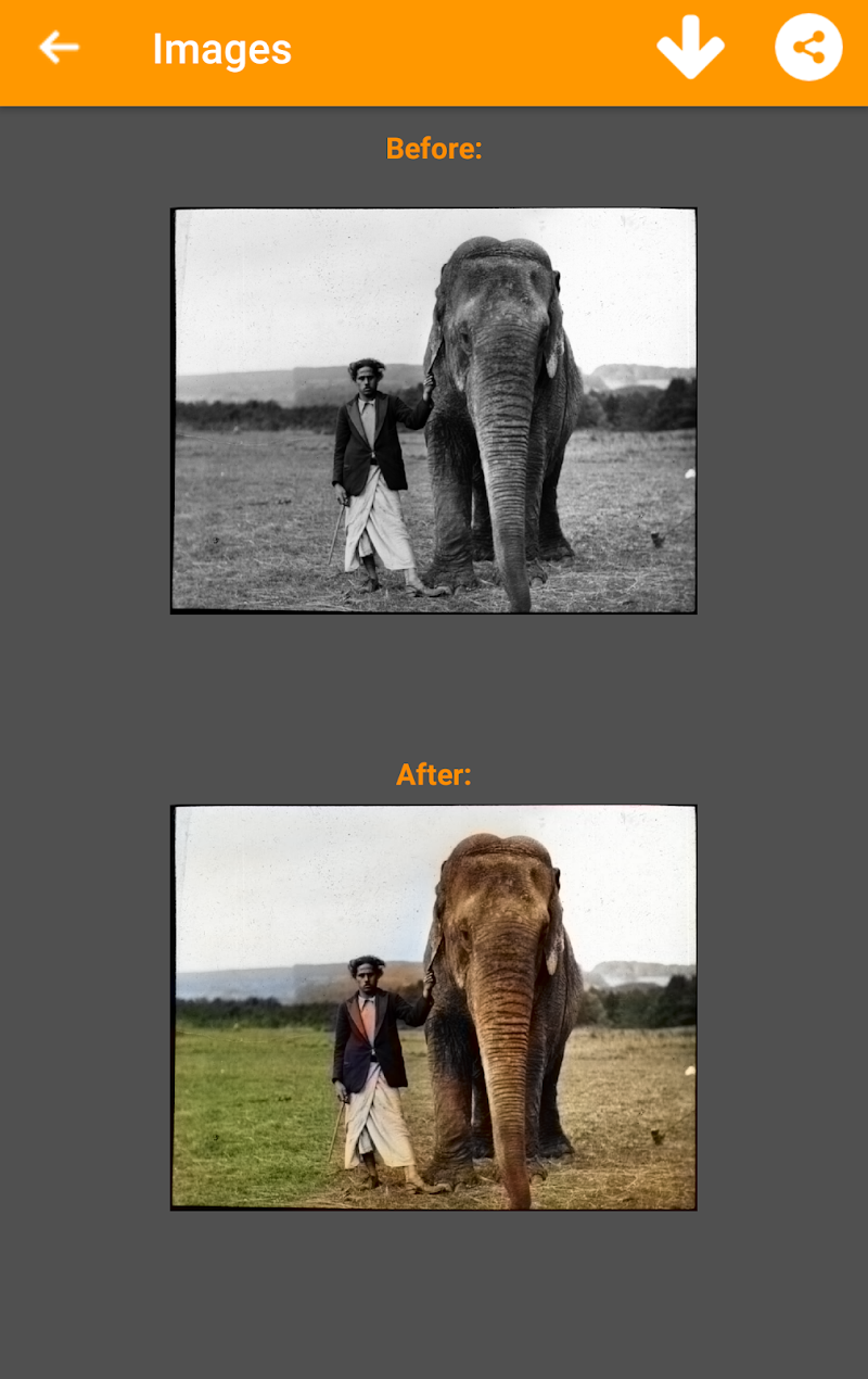 Black and White Photo Colorizer - Chromatix Screenshot 3